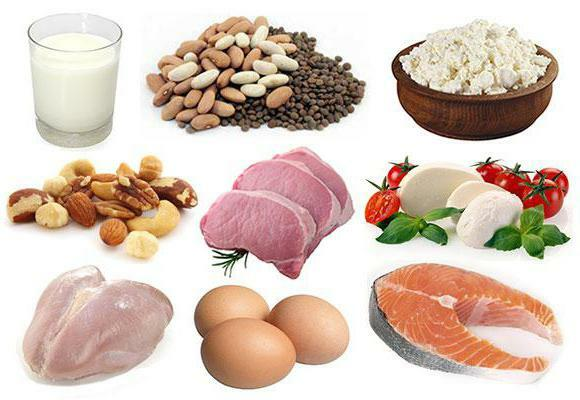 how much protein is absorbed at one meal