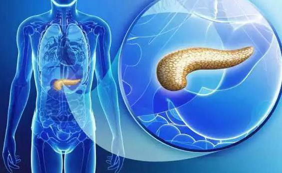 inflammation of the pancreas symptoms and treatment