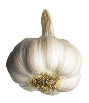 garlic husks in folk medicine
