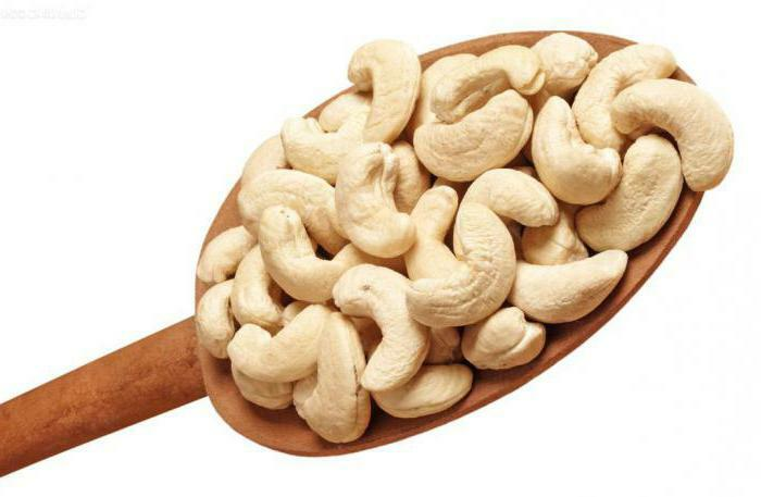 cashew nut useful properties and contraindications