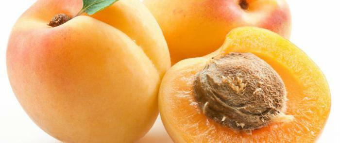 apricot useful properties and contraindications
