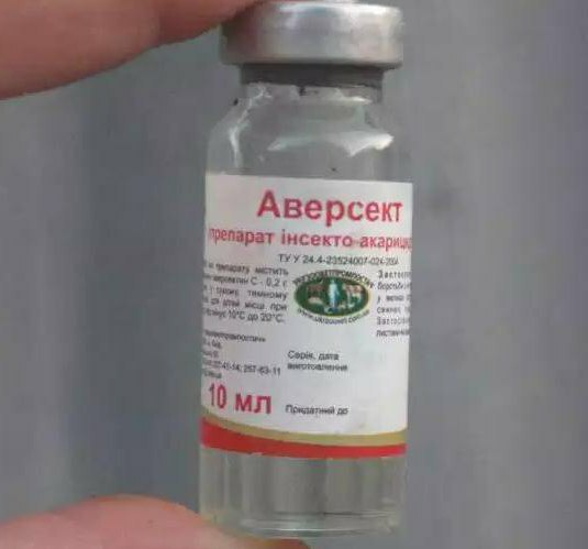 aversect 2 injection